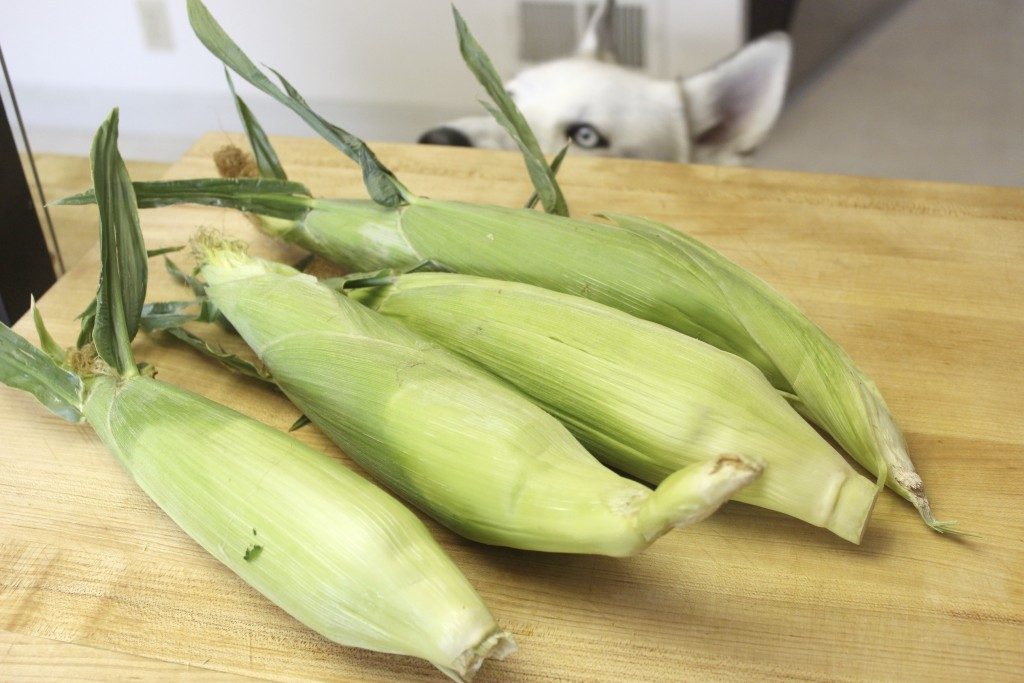 Grilled Corn 21